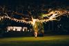 Jasmine under a beautiful tree at night | Mesastila, Magelang, Java ('Barnaby') Tags: highland barnabyrobson colonial mountains wwwbarnabyrobsonorg mountainous centraljava indonesia losaricoffeeplantation tropicalgardens
