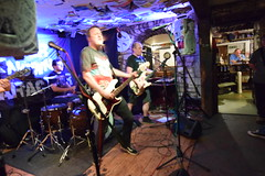 DSC_0238 (richardclarkephotos) Tags: love guitar lesser known character band three horseshoes bradford avon wiltshire uk guitars guitarists bass lead bassist drums drummer live music © richard clarke photos richardclarkephotos cat pub venue
