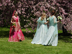 A lovely bride and two of her bridesmaids at the Dominion Arboretum in Ottawa, Ontario (Ullysses) Tags: bride bridesmaid dominionarboretum centralexperimentfarm ottawa ontario canada spring printemps marriage wedding