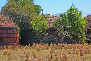 Donau Charcoal Kiln, US 41, Dunnellen, Florida (2 of 3)