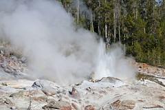 Geyser 4 (pniselba) Tags: usa estadosunidos yellowstone yellowstonenationalpark parquenacional parquenacionalyellowstone geysir geiser geyser nationalpark