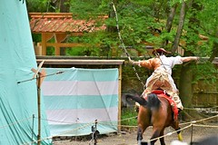 流鏑馬神事 (katsuzin13) Tags: kyoto shimogamo shrine shimogamoshrine yabusame horse 京都 下鴨 下鴨神社 流鏑馬神事 流鏑馬 馬 糺の森