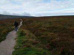 On the road (dagherrotipista) Tags: trekking wicklowway ireland walking torba camminando mochileros irlanda