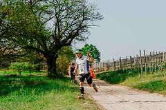 trail_delle_rocche_roero_2018_0210 (Ecomuseo delle Rocche del Roero) Tags: aprile ecomuseodellerocche edizione montà rocche trail uisp trailrunning roero