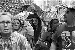L1006698 B&W (Damien DEROUENE) Tags: crowd rain timessquare people street nyc umbrella group