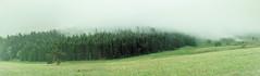 Brouillard (JulienCl) Tags: brouillard fog summer été auvergne france nature landscape paysage panorama pluie rain