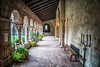 Cloistered Lineation (writing with light 2422 (Not Pro)) Tags: thecloisters manhattan nyc newyork hbm happybenchmonday garden plants candleabrum arches lines symmetry richborder sonya7 window