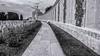 Tyne Cot Cemetery (Eric@focus) Tags: tynecot cemetery zonnebeke graves poppy flanders belgium 19141918 greatwar selenium remembrance red selectivecolour tokina tokina1116mmf28 discreet names grandeguerre grooteoorlog perspective