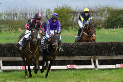 Safely negotiated (Steve Barowik) Tags: easingwoldraces racecourse grandstand horse jockey trainer groom cropframe saddle plate whip hunter chaser hound pointtopoint point2point stevebarowik barowik 70200mmf28vrii jump fence hurdle canter hack sbofls26 nikond500 quantumentanglement wonderfulworld unlimitedphotos flickrelite dx yorkainstyhunt the456yearoldsopenmaidenrace
