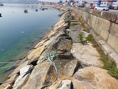 Puerto de pobra do caramiñal Coruña-España (5) (Los colores del Barbanza) Tags: embarcaciones mar azul darsena pobra do caramiñal barbanza coruña galicia españa spain puerto