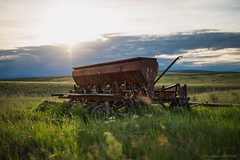 International Harvester (Chris Lakoduk) Tags: internationalharvester farmequipment rusty metal field landscape equipment farm sunset light balance combine