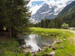 Surselva (oonaolivia) Tags: surselva graubünden grisons schweiz switzerland landschaft landscape mountains water wanderung walking hiking nature