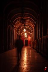 PraÇa do Comércio. Lisboa. (Carlos Velayos) Tags: lisboa lisbon portugal comercio plaza viaje travel trip viajar nocturna nightly contraluz backlight arquitectura architecture street streetphotography fotodecalle