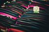Where am I? (thinhtv) Tags: danboard closeup cute colors toy