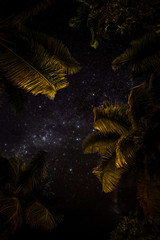 Reveal (duncan_mclean) Tags: night milkyway astrophotography stars sky nightsky seychelles palmtrees praslin astro