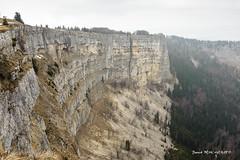 Rupture (patoche21) Tags: europe montagne nature naturel paysage suisse brouillard brume falaise formationrocheuse forêt paysagenaturel roche patrickbouchenard switzerland jura