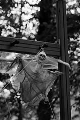 Lent vol (tonic_witch) Tags: film noiretblanc blackandwhite contaxrx planart1485 kodaktx400