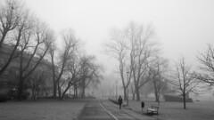 A lonely walk in a foggy morning (HansPermana) Tags: krakow krakau kraków cracow poland polen lesserpoland małopolska polska wislariver wisła vistula city oldtown foggy blackandwhite monochrome mistery