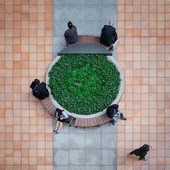 (alfonstr) Tags: 2018 japan japón tokyo tokio people men woman seat green symmetry square squareformat circle sit sitting seated