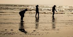 Tired of walking ! Balasore, Odisha, India (senguptapulak) Tags: silhouette tourist midday seabeach reflection shadow waves chandipur odisha india