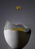 Egg Drop (KellarW) Tags: macrophotography catch droplets macro caught jagged waterdroplet gt egg brokenopen grayandyellow yellow grey eggshell opened broken gray