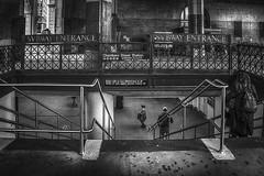SVBWAY (writing with light 2422 (Not Pro)) Tags: subway nyc newyork svbway chambersstreetstation bw monochrome blackandwhite city happyfencefriday hff richborder