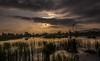 Aurore (joboss83) Tags: ciel sun soleil nuage var plaine champ lac etang provence garde eau sky cloud animal pond oiseaux sauvage landscape matin nuit nuages colline france fuji xt1 x