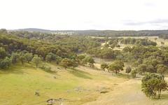 294 Reedy Creek Road, Guyra NSW