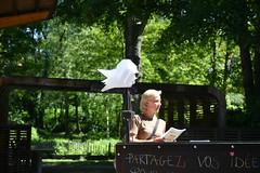 20180507-Vic_12535 (Viciniabe) Tags: schaarbeek schaerbeek josaphat commons