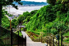 View Yuigahama Beach from Jojuin Temple : 成就院より由比ヶ浜の展望 (Dakiny) Tags: 2018 spring may japan kanagawa kamakura city street nikon d750 nikonafsmicronikkor60mmf28ged afsmicronikkor60mmf28ged nikonclubit