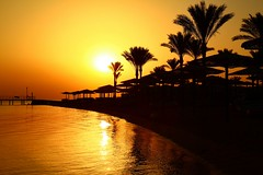 golden bay (werner boehm *) Tags: wernrboehm redsea egypt sunrise