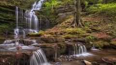 Yorkshire falls... (L A H Photography) Tags: waterfall yorkshire longexposure lumixg9 nature outdoor colourful pretty waterfalls rugged orange green foliage rocks landscape m43 light wood woodland