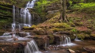 Yorkshire falls...