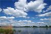 Heitelân - Homeland #58 (Hindrik S) Tags: fryslân friesland netherlands nederland alddiel clouds wolken sky blue bluesky loft lucht himel water reflection weerspiegeling wjerspegeling reflectie refleksje wetter wasser leau riet reid landscape lânskip landschap landschaft scenery scenic panorama sal1650 sony1650mmf28dtssm sonyphotographing sony sonyalpha 2018 a57 α57 slta57