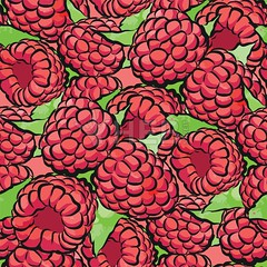 seamless pattern of raspberries (Hebstreits) Tags: art background berry bright color decoration design dessert diet draw drawing eating food fresh fruit garden graphic green hand harvest healthy illustration isolated juicy leaf natural nature organic ornament paper pattern pink plant raspberries raspberry red retro ripe seamless summer sweet tasty texture vector vegetarian vintage vitamin wallpaper watercolor white