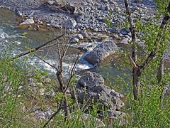 18050718758valtrebbia (coundown) Tags: gita tour statale stradastatale 45 ss45 valtrebbia trebbia natura boschi verde fiume
