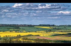 Landschaft bei Wettin (p h o t o . w o r l d s) Tags: wettin kloschwitz trebitz johannashall hallesaale sachsenanhalt frühling felder wiesen grün gelb fujixt10 photoworlds aisnikkor105mmf25