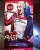 Harley Quinn Hair Dye (booboo_babies) Tags: dccomics comicbook harleyquinn suicidesquad movie film 2016 hair haircolor hairdye margotrobbie