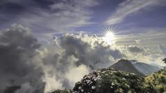 Azaleas | 主峰杜鵑花 (KentFan) Tags: 合歡山 合歡 杜鵑 高山杜鵑 日出杜鵑 日落杜鵑 azaleas 主峰 合歡主峰 夕陽 夕照 松雪樓 高山箭竹 箭竹 復育 雲海 太陽芒 星芒 hehuan mountain sky sunset sunrise flower cloud cloudofsea 南投 仁愛鄉 秀林鄉 花蓮 6d2