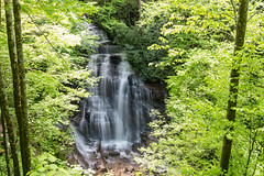 Soco Falls (Jon Ariel) Tags: soco falls waterfall nc northcarolina smokymountains smoky mountains