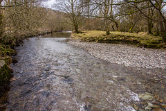 Great Langdale Beck (StevePilbrow) Tags: great langdale beck national trust river brathay lake district park cumbria lakes north west england country side water walking elter elterwater flowing trees nikon d7200 nikkor 18105mm march april 2018