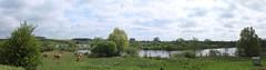 L'étang des grandes aiguilles (fa5962) Tags: lesgrandesaiguilles somme panorama picardie hautsdefrance paysage frédéricadant adant eos760d canon breilly