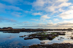 Sky reflected in a low tide (Joel Apple) Tags: pacificnorthwest beach ocean northamerica things moody canada vancouverisland britishcolumbia places clouds