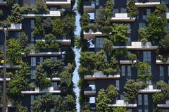 the gap (Hayashina) Tags: milano milan italy gap building plants windows