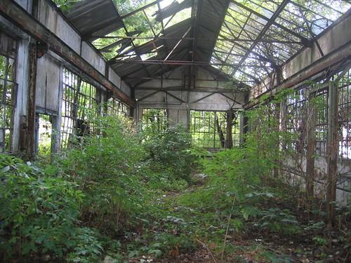 Hidden Brentford: Lots Ait 076