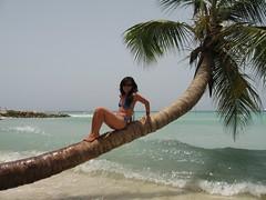 Miss August (Timo Kuhn) Tags: beach paradise dominicanrepublic posing chillin palmtrees caribbean aki whitesand islasaona