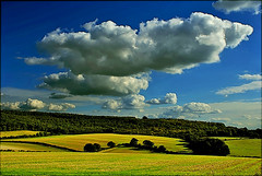 Newly sown fields in the Chilterns (algo) Tags: blue sky green clouds photography interestingness topf50 bravo searchthebest quality sony topv1111 chilterns topv999 explore topv5555 fields topv777 topv9999 algo topf100 topf200 100f 200f blueribbonwinner 692 explore9 50f specland specnature gtaggroup goddaym1 explore100 abigfave sproutingseeds bratanesque