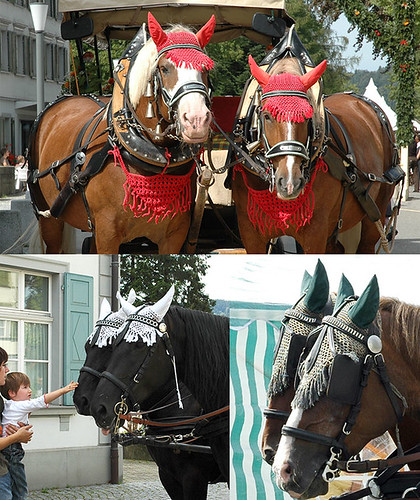 Crocheted accessories for horses