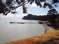 china camp (lawatt) Tags: park beach water pier chinese historic marincounty eucalyptus chinacamp