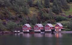 P8317047.JPG (_Carmen_) Tags: skandinavien norwegen flam reiseblog